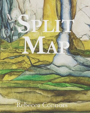 The cover of split map with landscape by Liz Simmons